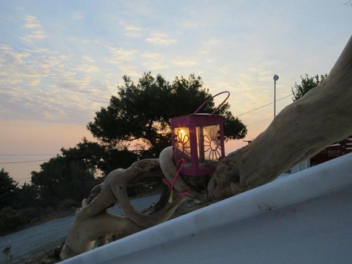 la nostra lanterna sul tronco